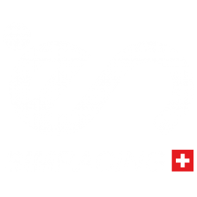 ieS_SimRacing_hoch_white (2)